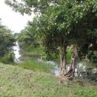 Site de canal