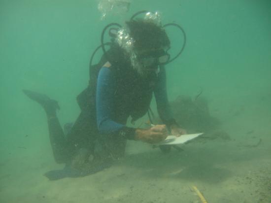 Plongeur sur site