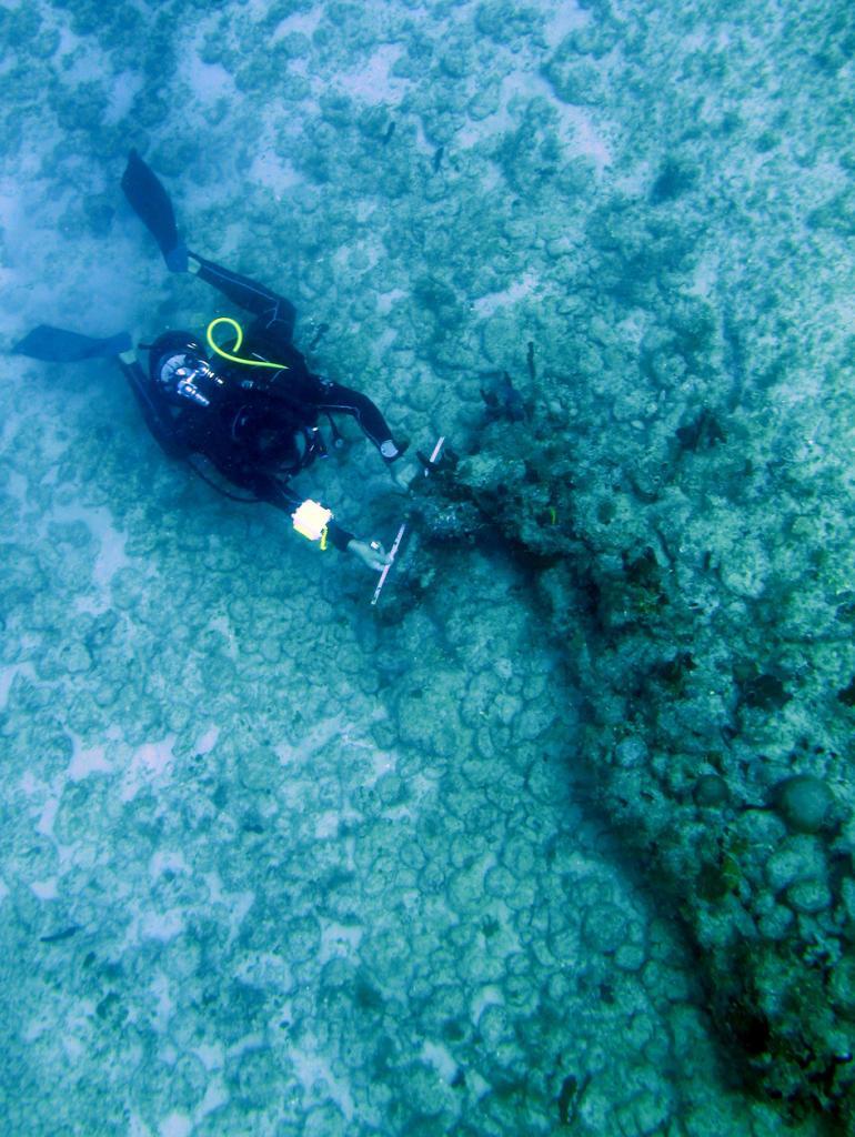Ancre Grand Cul-de-sac marin