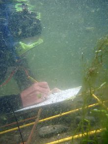 Scale drawing underwater